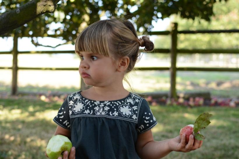 Marlow eating apples