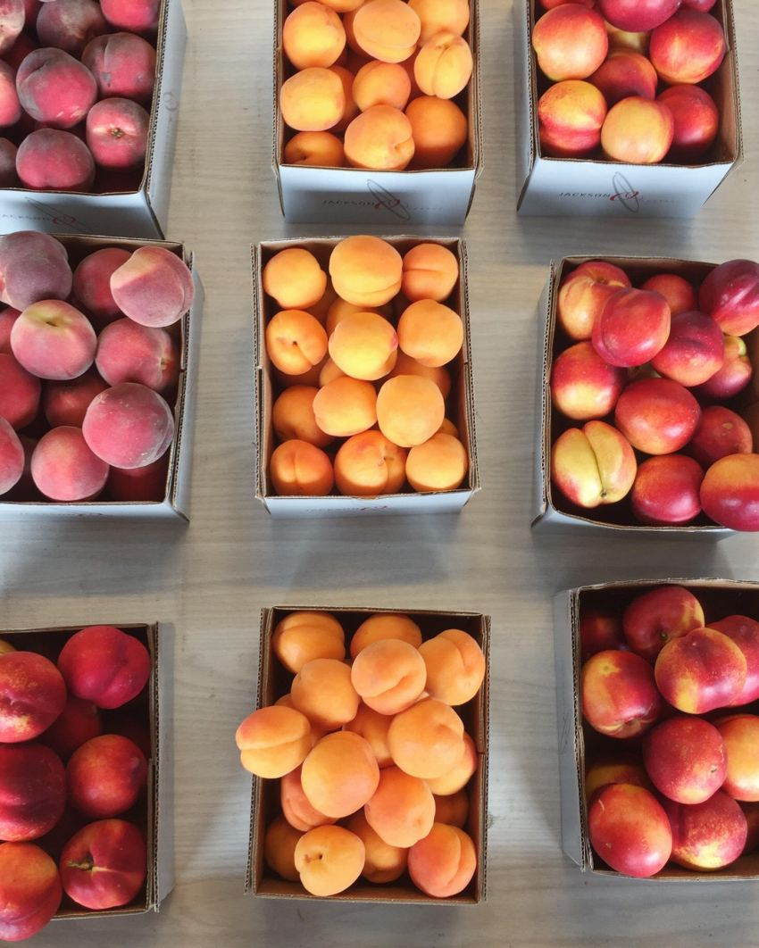 peaches in cromwell