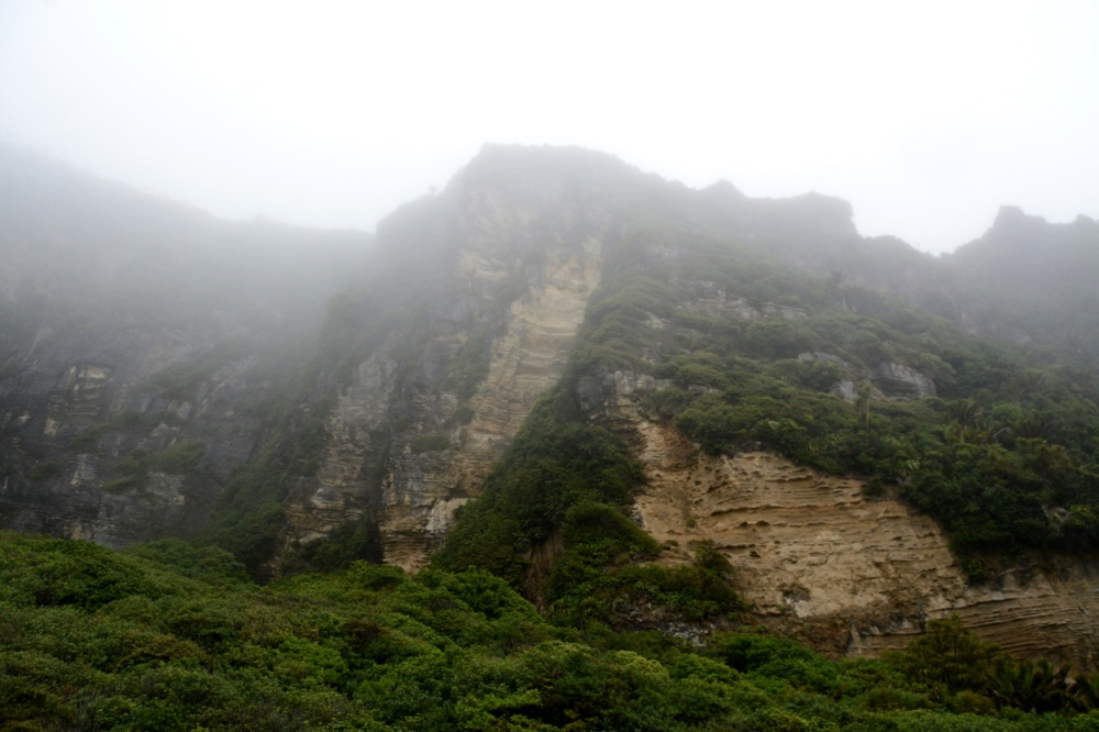 punakaiki hills in fog