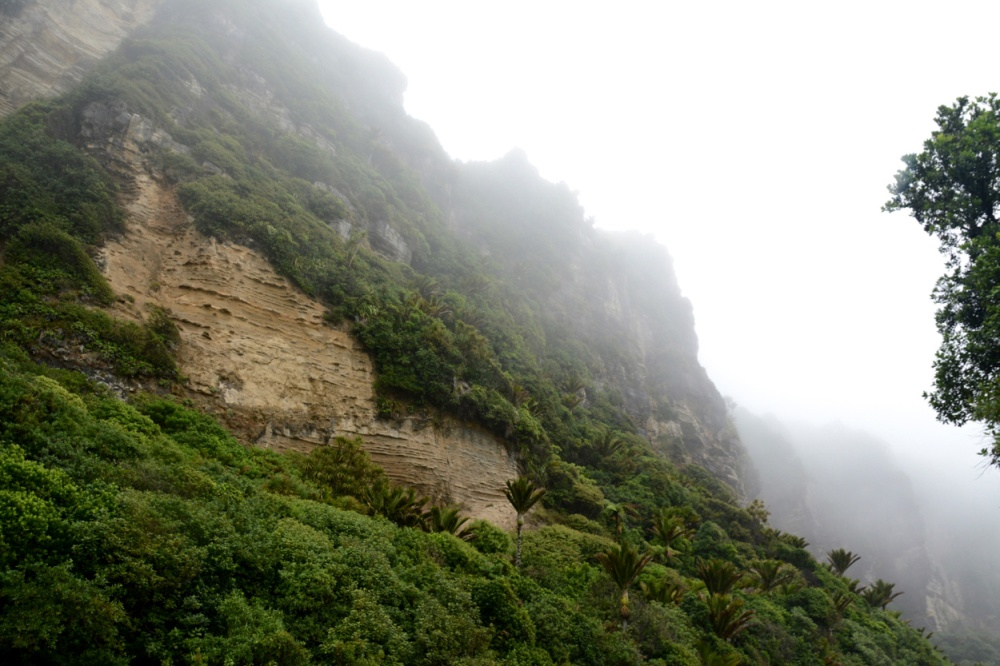 punakaiki hills