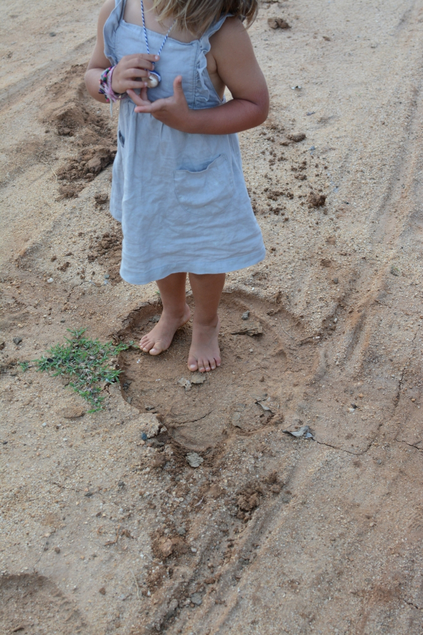 marlow inside an elephant footprint