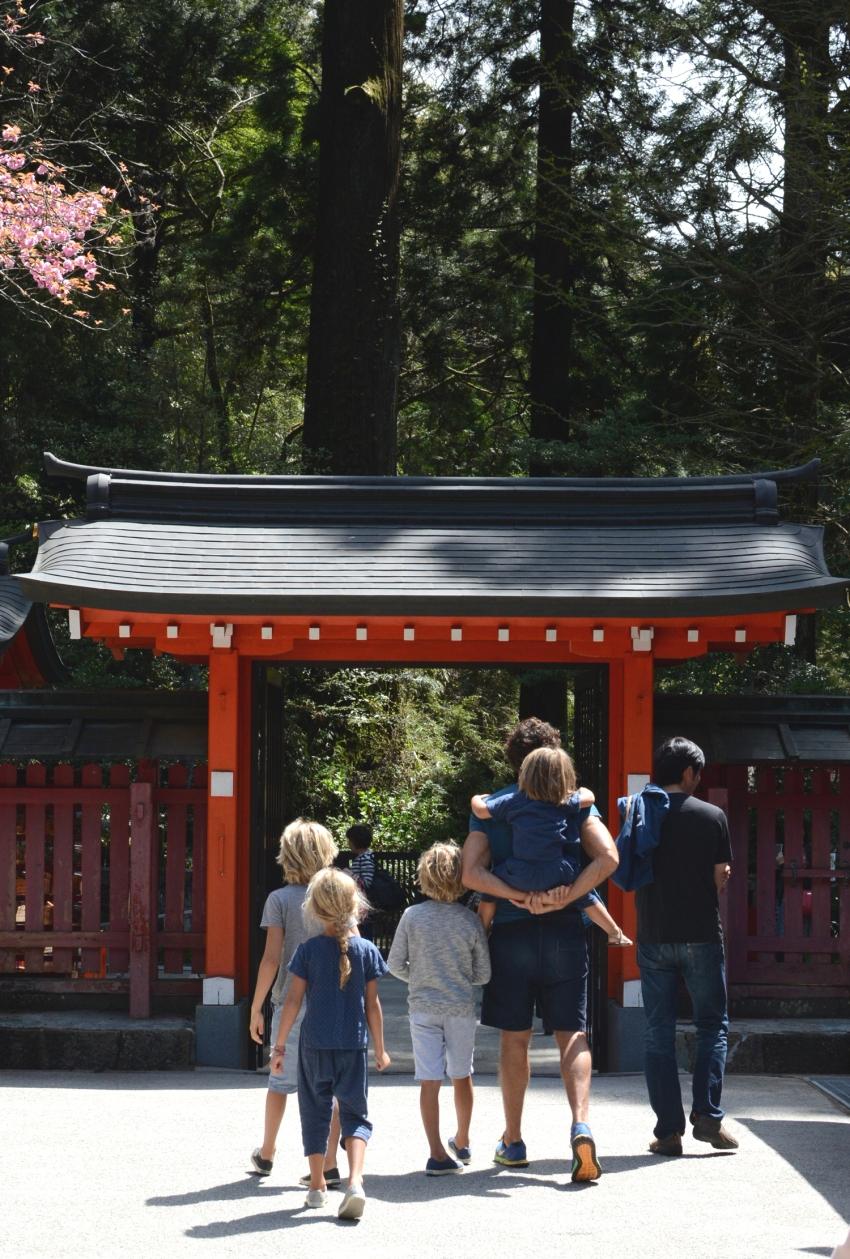 walking into hakone shrine